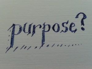 purpose ?